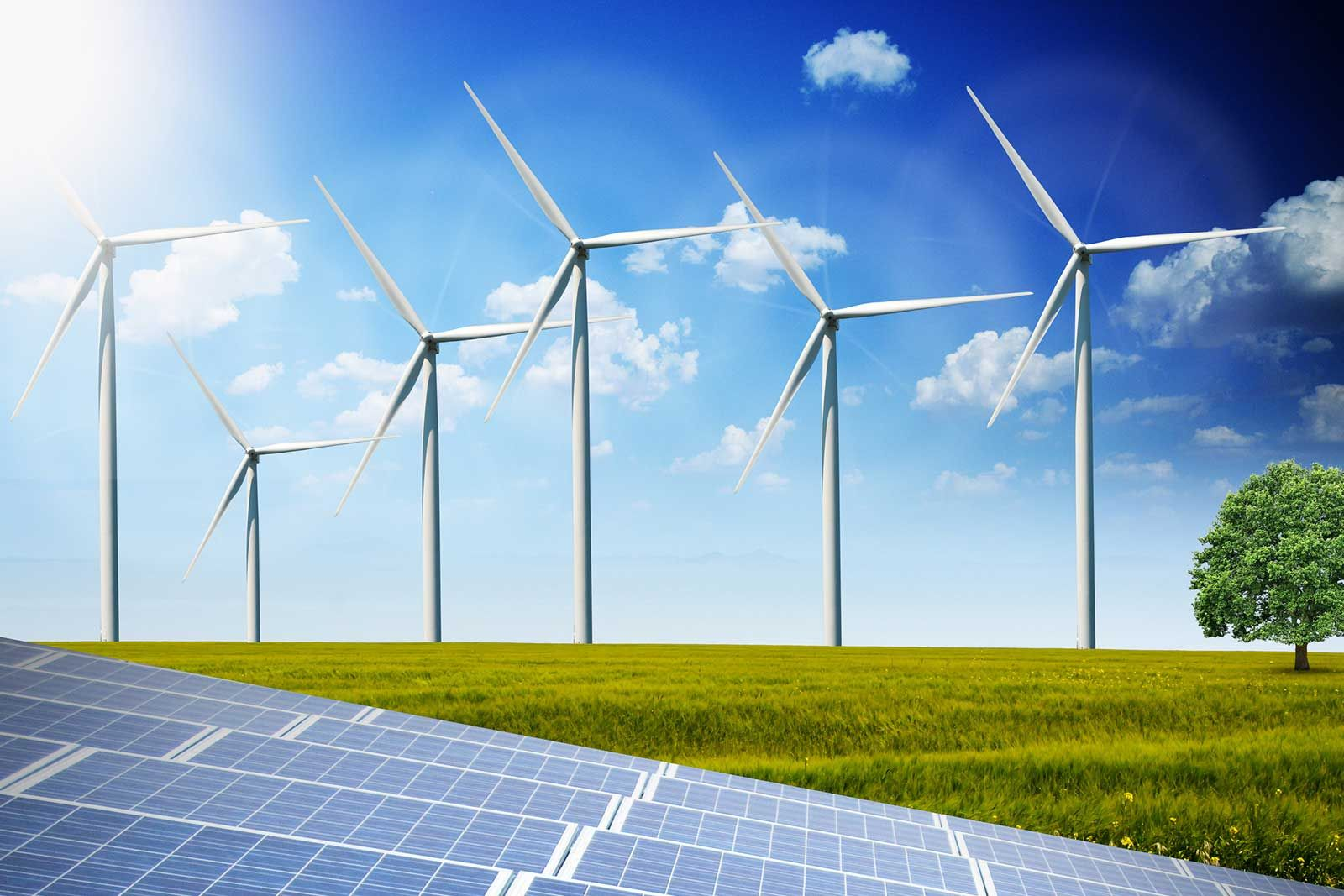 Investment in renewable energies